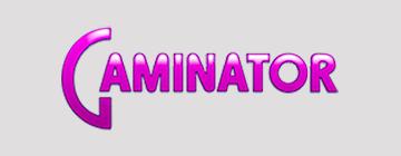 GAMINATOR — игровая система