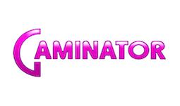 Подключение к Gaminator