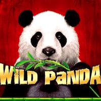 wild panda Stargame